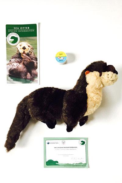 kiehl's sea otter