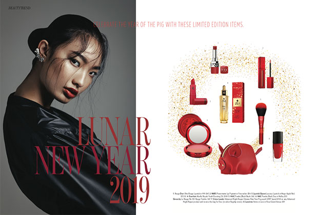 chinese lunar new year beauty